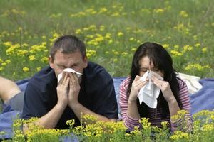 очиститель воздуха для людей страдающих аллергией