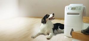 что нужно знать перед покупкой осушителя воздуха в Вашу квартиру